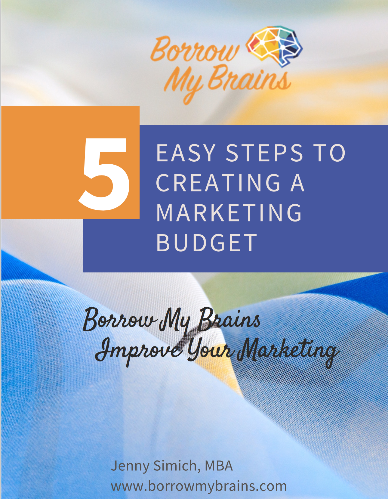 Front page of 5 Steps
